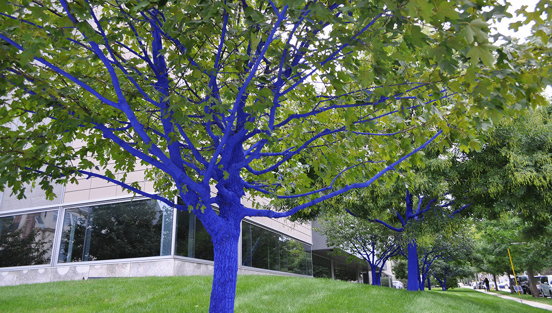 konstantin dimopoulos the blue trees currier museum of art